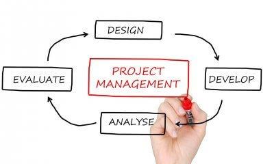Ingeniería de organización industrial